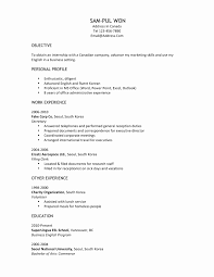 format for resume writing international format resume lovely 177 best resume building images