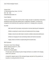resume examples for management position cheap mba dissertation methodology advice sample critique of