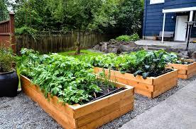 Wood For Raised Vegetable Garden by Raised Vegetable Garden Ideas Gardening Ideas