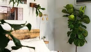 Garden Bedroom Ideas Jungle Bedroom Ideas Helena Source Net