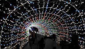 Zoo Lights Schedule by Lehigh Valley Zoo U0027s Winter Light Spectacular And Lights In The