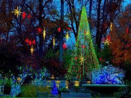 Garvan Gardens Christmas Lights 625 Best Christmas Lights 2 Images On Pinterest Christmas Lights