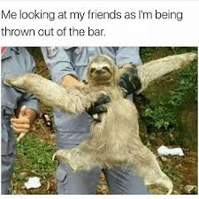 Funny Sloth Memes - 41 funny memes pictures with savage captions that will make you lol
