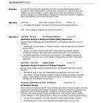 summary for resume examples professional summary examples for