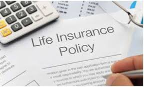 life insurance quote now tag page for dying too young independent life insurance quotes