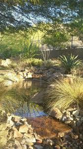 tulsa oklahoma united states desert landscape design exterior