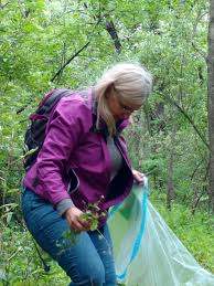 native plant salvage foundation dnr dnr and volunteers team up for natural resource stewardship