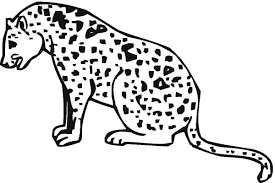 coloring pages cheetah gianfreda net