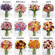 Flowers Of The Month Flowers Of The Months Best Flowers And Rose 2017