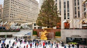 the 2016 rockefeller center christmas tree has arrived in midtown