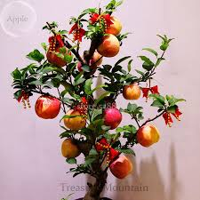 compare prices on indoor apple tree online shopping buy low price