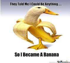 Meme Duck - a banana duck by anasvirus meme center