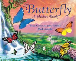 butterfly butterfly by petr horacek penguinrandomhouse com