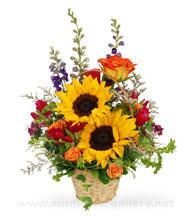 get better soon flowers get well flower getwell arrangements glenview florist 60025 60026