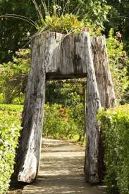 tree stump planters 159 best homage to the tree stump images on pinterest tree