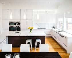 Gloss Kitchen Cabinet Doors White Gloss Kitchen Cabinets Home Design Ideas High Houzz