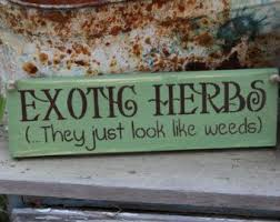 best 25 funny garden signs ideas on pinterest garden signs