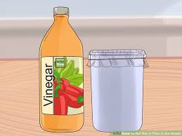 How To Get Rid Of Backyard Flies by 4 Ways To Get Rid Of Flies In The House Wikihow
