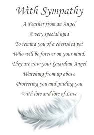 sympathy cards for pets best 25 pet sympathy quotes ideas on pet loss pet