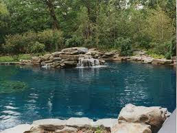 54 best pool landscaping images pool landscaping