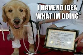Dog Doctor Meme - i have no idea what im doing doctor dog quickmeme