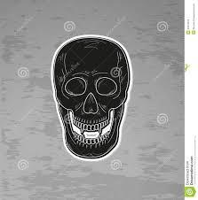 Vampire Teeth Skull With Vampire Teeth Stock Vector Image 44518076