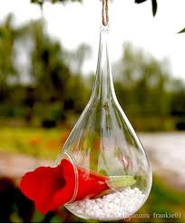 Wholesale Glass Flower Vases Hanging Glass Plants Flower Vase Hanging Air Plant Terrarium Moss