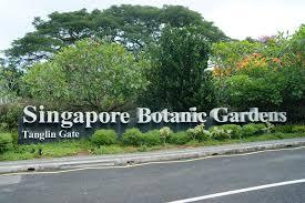 Botanical Gardens In Singapore by Singapore Botanic Gardens Aaronyeo U0027s Final Year Project