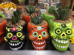 Dia De Los Muertos Home Decor Skull Planters From Trader Joe U0027s Fall 2017 Popsugar Home