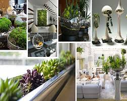 decorations adorable hand crafted indoor plants decoration ideas