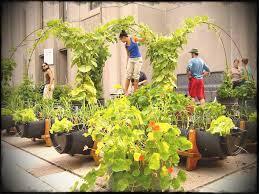 Ideas For Terrace Garden Best Of Terrace Garden Ideas Home Idea Home Garden Design Projects