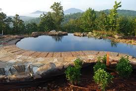 Backyard Swimming Ponds - swimming pond garden swimming pond free chemical swimming pool