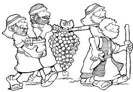 91 coloring page israelites manna explore the tabernacle