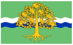 Nottinghamshire County Council Committee System Nottinghamshire Flag County Flags