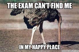 Ostrich Meme - meme