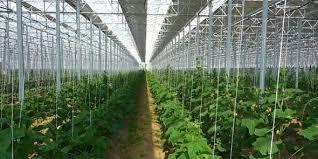 chambre d agriculture nantes serres solaires la chambre d agriculture des p o réclame un