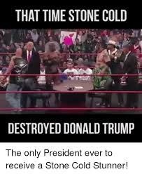 Stone Cold Meme - 25 best memes about stone cold stunner stone cold stunner memes