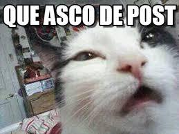 Gato Meme - que asco de post que gato meme on memegen