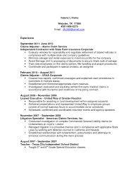 Resume Sample Underwriter by Insurance Claims Representative Sample Resume