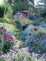 Gardening Zones Uk - best 25 prairie garden ideas on pinterest garden grass