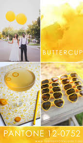 Pantone Yellow by 52 Best Pantone Palettes Images On Pinterest Colors Wedding And