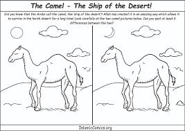 image camel coloring page 3 4 walking arabian camel coloring page