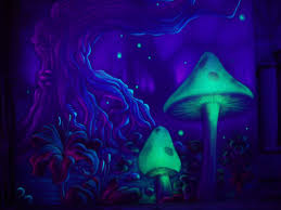 positive drug stories please submit psychedelic trippy
