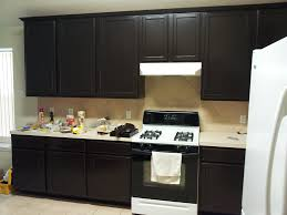 Refinishing Kitchen Cabinets With Gel Stain Kitchen Staining Kitchen Cabinets With Imposing How To Staining
