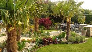 Mediterranean Gardens Ideas Commercial Landscaping Ideas With Palms Garden Designer