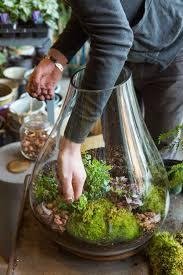 289 best garden terrarium ii images on pinterest garden