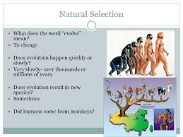 selection what does the word evolve to change