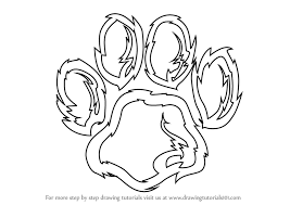 learn how to draw a tiger paw animals for by