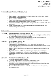 Senior Resume Template Mesmerizing Resume Format Of Accounts Executive 19 For Your Resume