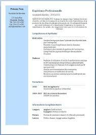 assistant de bureau modeles de cv assistant de bureau delovoykrug info